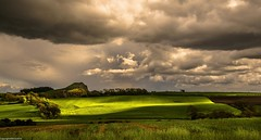 Afternoon light. (AlbOst) Tags: sunlight rain clouds sheep farmland rays grazing centralscotland greatphotographers clearingskies