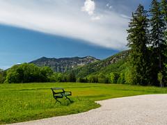 Emperor's bench - HBM (Karsten Gieselmann) Tags: blue mountain color green sterreich hill olympus berge grn blau farbe obersterreich m43 mft badischl at microfourthirds mzuiko 1240mmf28 em5markii kgiesel