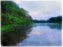Early morning river (Solly Avenue) Tags: light painterly photomanipulation sunrise river landscape dawn impressionism waterscape digitalphotoart ipadpainting ipadsketching painterlyapp