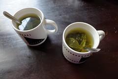 Herbata z liściu koki | Coca tea