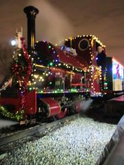 IMG_1661 (Hampton & Kempton Waterworks Railway.) Tags: devon 2014 santaspecial darent
