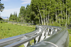 Mountain Roller Coaster (aaronrhawkins) Tags: rollercoaster mountain trees forest thrill ride track snowbird resort summer saltlakecity utah mountains curve fun vacation aaronhawkins