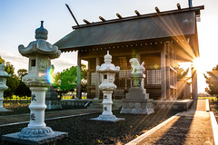 Temple (kyle_gallagher) Tags: japan shrine  shinto