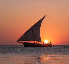 A Stonetown Dhow (Drouyn) Tags: ocean sunset tanzania boat indian sail zanzibar stonetown dhow