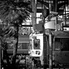 Nissa-lifornication #24 (lepoSs) Tags: blackandwhite bw france square nice gare noiretblanc quadro nb 100mm côtedazur paca tokina 2012 carré cuadro frenchriviera viereck 500x500 eos5d tokinaaf100mmf28macro atxm100afprod