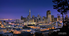 City Lights - San Francisco, California (Darvin Atkeson) Tags: sanfrancisco california park street city travel church skyline night lights bay downtown glow cityscape cathedral district famous broadway landmark tourist coittower taylor baybridge bankofamerica bayarea vista transamerica redlight vallejo darvin atkeson darv inacoolbrith liquidmoonlightcom mikeoria