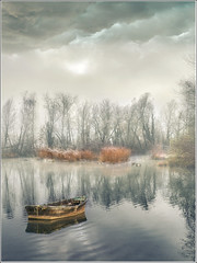 Two ducks (Jean-Michel Priaux) Tags: trees shadow mist lake france tree art nature water fog forest photoshop painting landscape boat fishing nikon pastel alsace swamp paysage foret arbre hdr brume barque tang savage sauvage pche ried bteau d90 marcage mygearandme ringexcellence flickrstruereflection1 marckholsheim