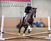 Retired Racehorse Training Projects Trainer Challenge Finale in Harrisburg, PA