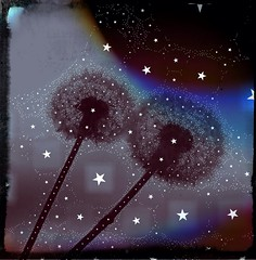 Under The Stars (BLACK EYED SUZY) Tags: dandelion percolator iphone poxlromatic