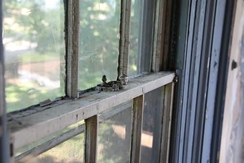 Crank and chain window
