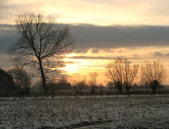 Sunshine through the clouds (Foto Dominic) Tags: morning trees winter light nature field clouds sunrise landscape bomen natuur wolken veld ochtend landschap zonsopgang fotodominic