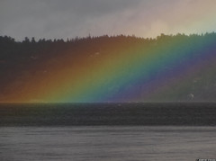20110907_2 Rainbow diving into Lake Aspen | Lerum, Sweden (ratexla) Tags: favorite lake color colour water colors beautiful wow landscape rainbow scenery colorful europe colours sweden earth norden skandinavien lakes scenic sverige rainbows aspen scandinavia scandinavian tellus sj lerum nordiccountries catchycolorsred regnbge 2011 lakeaspen europaeuropean almostanything unlimitedphotos canonpowershotsx10is photophotospicturepicturesimageimagesfotofotonbildbilder notintheeternityset 7sep2011