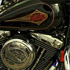 Harley Ripollet # 5 (m@tr) Tags: barcelona espaa canon country harleydavidson catalunya tamron motos ripollet canoneos400ddigital mtr marcovianna tamronaf70300mmf456dildmacro harleydavidsonripollet2007 trobadaharleyripollet