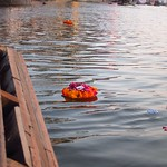 "Flower Offering on the Ganges <a style=""margin-left:10px; font-size:0.8em;"" href=""http://www.flickr.com/photos/14315427@N00/6880662967/"" target=""_blank"">@flickr</a>"