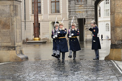 Changing of the guard Photo