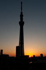 Sunrise (Flickr collection by Getty images) (Yuripere) Tags: city sky sunlight colour silhouette japan vertical skyline architecture skyscraper sunrise outdoors photography dawn tokyo citylife nopeople 日本 asakusa 空 japon 写真 シルエット カラー sumidariver 夜明け 東京都 tokyoprefecture capitalcities traveldestinations 日本文化 都市 外壁 buildingexterior 無人 首都 超高層ビル 屋外 traditionallyjapanese tokyoskytree 都市生活 太陽の光 縦長 構築物 旅行地 都市の全景