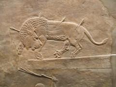 Royal Lion Hunt 1 (D. S. Hałas) Tags: uk greatbritain england sculpture london unitedkingdom camden relief bloomsbury britishmuseum middlesex nineveh assyria halas unitedkingdomofgreatbritainandnorthernireland hałas ancientassyria royallionhunt