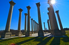 The original columns from the U.S. Capitol (WilliamMarlow) Tags: washingtondc dc nikon shadows arboretum tokina uscapitol cc creativecommons dcist sunburst nikkor nationalmonuments nationalarboretum americanruins capitolpillars d7000 tokina1116 originalcapitol