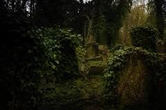 Cemeteries of London (rosa_rusa) Tags: uk england london londres highgate cemeteriesoflondon rosarusa
