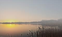 Misty Morning (HDR) (eFRAME.co.uk) Tags: sky mist water sunrise bedford framed framer frame framing hdr pictureframe photoframes eframe priorycountrypark eframecouk 20120227 20120129