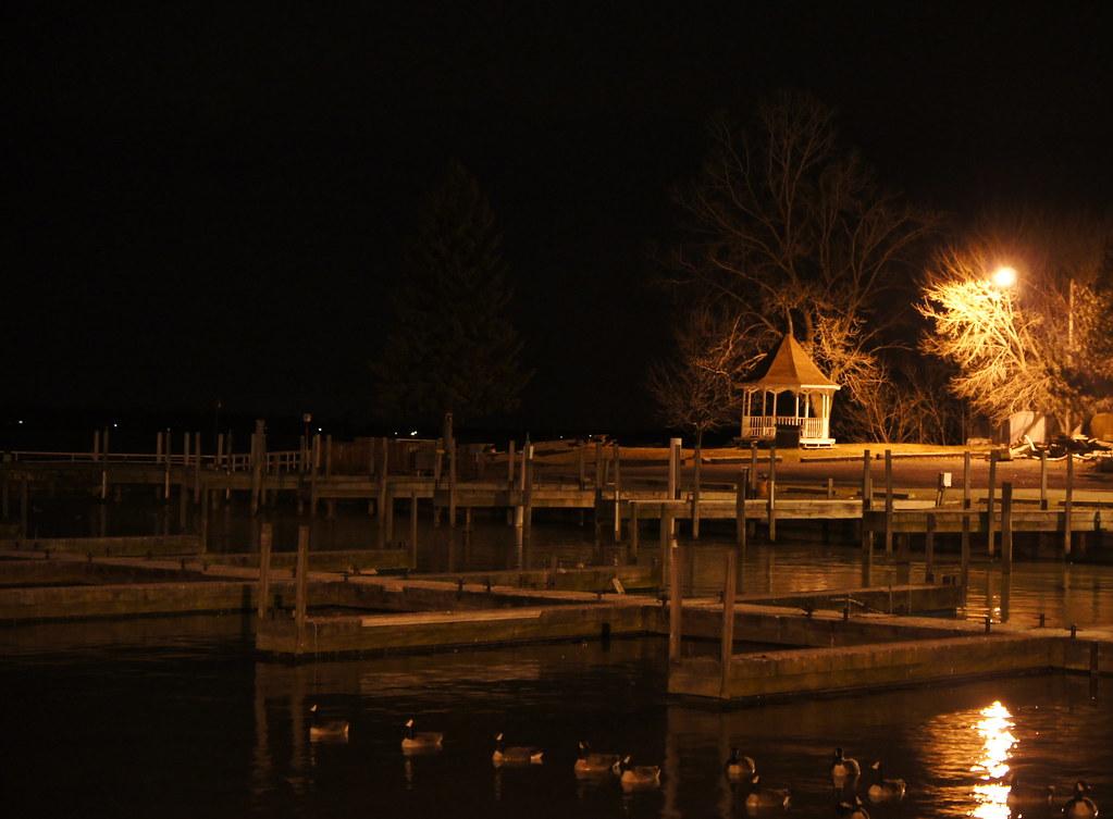 Empty Docks & Ducks
