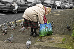 Margaret ! (James Whorriskey (Delbert Jackson)) Tags: uk ireland birds catchycolors photo photographer feeding picture londonderry margaret northernireland derry ulster impressionsexpressions aroundus jameswhorriskey delbertjackson jameswhoriskey jameswhorriskeyphotography