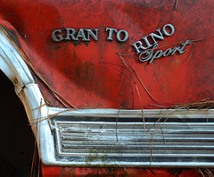 Gran Torino Sport (davidwilliamreed) Tags: old white abandoned car metal georgia logo decay grunge neglected rusty forgotten crusty oldcarcity