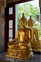 Buddha in the Window (1) (Ursula in Aus (Away)) Tags: window statue thailand temple gold buddha buddhist buddhism wat seated   prachuapkhirikhan bangsaphan thongchai  earthasia  totallythailand   khaothongchai watthangsai