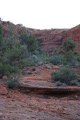 IMG_0936 (irishngerman) Tags: sedona morninghike margsdraw