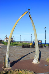"Whale Jaw Bone Arch on West Cliff • <a style=""font-size:0.8em;"" href=""http://www.flickr.com/photos/11477083@N00/6969432969/"" target=""_blank"">View on Flickr</a>"