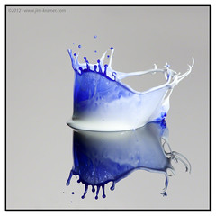 Blue & White Too #9027 | 2012 - www.liquids-in-motion.com (IR Cincy Jim (Liquids-in-Motion)) Tags: water speed high cream surface drop collisions solid crowns jimkramer stopshot cognisys liquidsinmotion liquidsinmotioncom