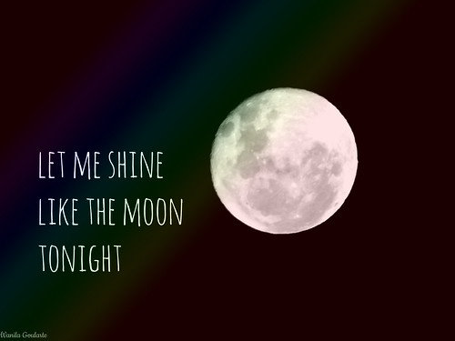 84/366 shine like the moon