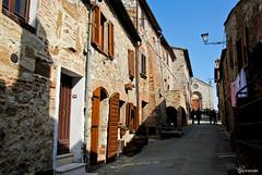 Montefollonico (Chiara Salvadori) Tags: old italy landscape spring vines village medieval tuscany fields siena toscana vino colline montefollonico campi paese viti vinonobile