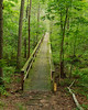 Big Hill Pond State Park (bhophotos) Tags: travel trees usa green nature landscape geotagged nikon tennessee swamp boardwalk d80 2470mmf28g bighillpond bruceoakley