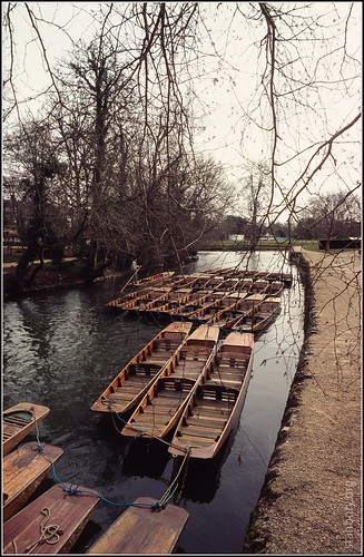 Punts on the Cherwell, Oxford