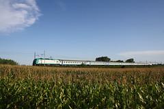 R2894 GE Br. - NO a Strada Cerca (Maurizio Zanella on/off (on vacation!!!!)) Tags: italia trains railways fs alessandria trenitalia treni ferrovie e464xxx stradacerca r2894