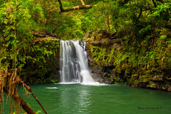 Waikamoi Falls (Happy Photographer) Tags: green hawaii waterfall maui hana roadtohana happyphotographer amyhudechek waikamoifalls