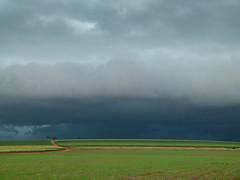 (IgorCamacho) Tags: brazil sky storm paraná field brasil clouds way céu southern cielo nubes tormenta nuvens campo agriculture sul horizonte caminho tempestade agricultura