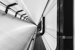 """Vista"" Canary Wharf Crossrail Place, London, UK (davidgutierrez.co.uk) Tags: city uk greatbritain travel light england people urban blackandwhite bw white abstract black building london art monochrome beautiful station architecture photography lights design blackwhite nikon europe cityscape photographer angle footbridge unitedkingdom britain interior capital transport tunnel structure londres docklands londonunderground canarywharf londra eastlondon blackandwhitephotography  londyn westindiaquay crossrail ultrawideangle    d810 londonboroughoftowerhamlets nikond810 1424mm davidgutierrez londonphotographer afsnikkor1424mmf28ged davidgutierrezphotography canarywharfcrossrailstation canarywharfcrossrail crossrailplace"