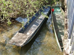Rotting Gondolas (mikecogh) Tags: rotting wooden oxford riverthames gondolas