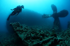 IMG_1612 (Andrey Narchuk) Tags: blue light sea underwater redsea sudan deep diving diver watrer