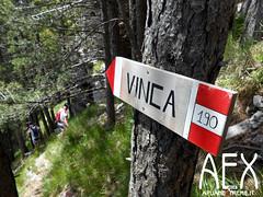 Lizzari-36 (Cicloalpinismo) Tags: parco mountain bike video foto extreme mtb cai monte sentiero alpi aex 190 apuane appennino vinca vetta foce escursione altana ugliancaldo cicloalpinismo cicloescursionismo lizzari