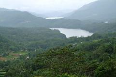 Sri Lankan landscape (maddalena monge) Tags: teaplantation liptontea goldentulipstea srilanka ceylon