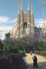 20120530_SagradaFamilia (jae.boggess) Tags: spain espana europe travel trip eurotrip spring springtime barcelona gaudi sagradafamilia church