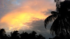 Marathon Key Florida Sunset (ikiem2015) Tags: usa florida floridakeys keys sunset clouds niceweather palms palmen wolken