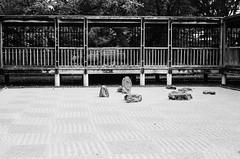(laura_rivera) Tags: film japanesegarden minolta kodak tmax 400 vivitar srt202 55mmf28 laurarivera