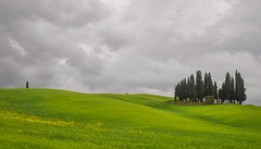 Val d'Orcia (ccr_358) Tags: italien trees sky italy panorama green primavera grass landscape grey spring scenery italia day view cloudy postcard hill hills tuscany april cypress aprile toscana valdorcia italie cartolina 2016 cipressi provinceofsiena ccr358