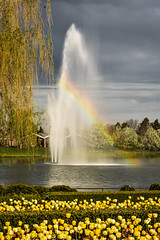 Spectrum (Explored - June 26, 2016 #91) (marionchantal) Tags: usa lake love fountain colors gardens freedom illinois rainbow poem colours unitedstates spectrum free tolerance hues glencoe hue equality chicagobotanicgardens oneness 180300mm nikond7200 kamandkojouri