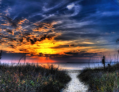The Path (j/bimages) Tags: impressedbeauty magicunicornverybest magicunicornmasterpiece mygearandme mygearandmepremium mygearandmebronze mygearandmesilver mygearandmegold mygearandmeplatinum mygearandmediamond ringexcellence flickrsfinestimages1 flickrsfinestimages2