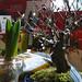 jardindelangel6